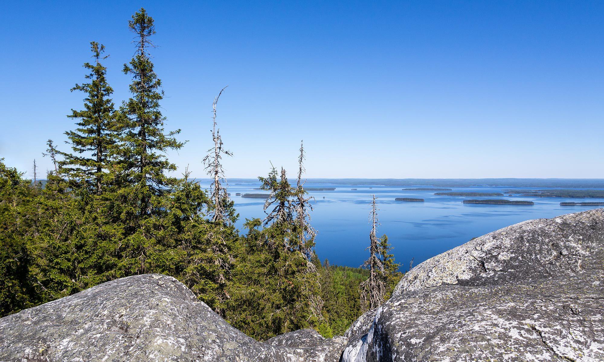 Vaellusmatka Kolin kansallispuistoon ja Herajärven kierros