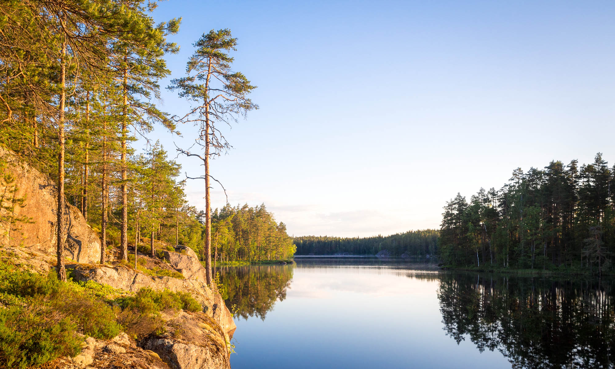 Nuuksio National Park in summer, in June. Summer in Finland is clear lakes and forests. Finnish nature near Helsinki, Finland.
