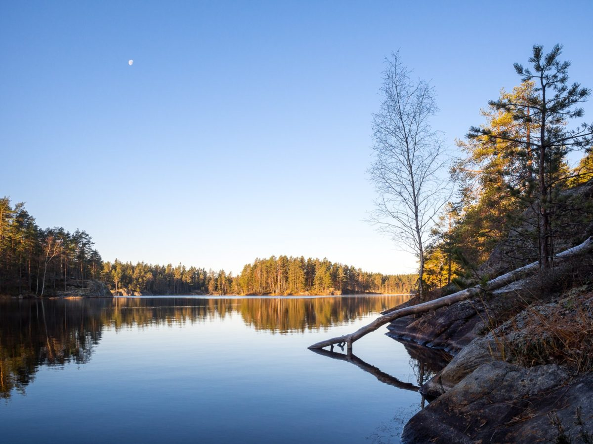 Nuuksio National Park in fall. Cold nights and sunny days in November. Nature near Helsinki, Finland.