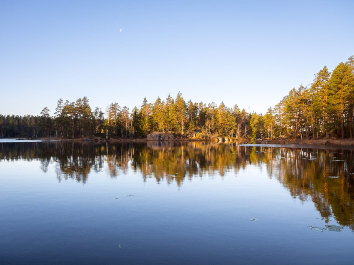 Nuuksio National Park in fall. The low-hanging sun of October, November and December make the landscape feel magical. Nature near Helsinki, Finland.