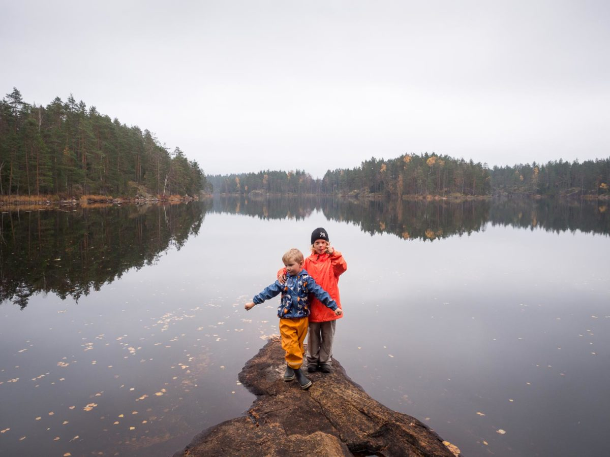 Nuuksio National Park in fall, in October. Hiking and picking mushrooms with children. Finnish nature near Helsinki, Finland.