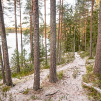 Nuuksio National Park in fall. First snow covered the trails in October. Nature near Helsinki, Finland.