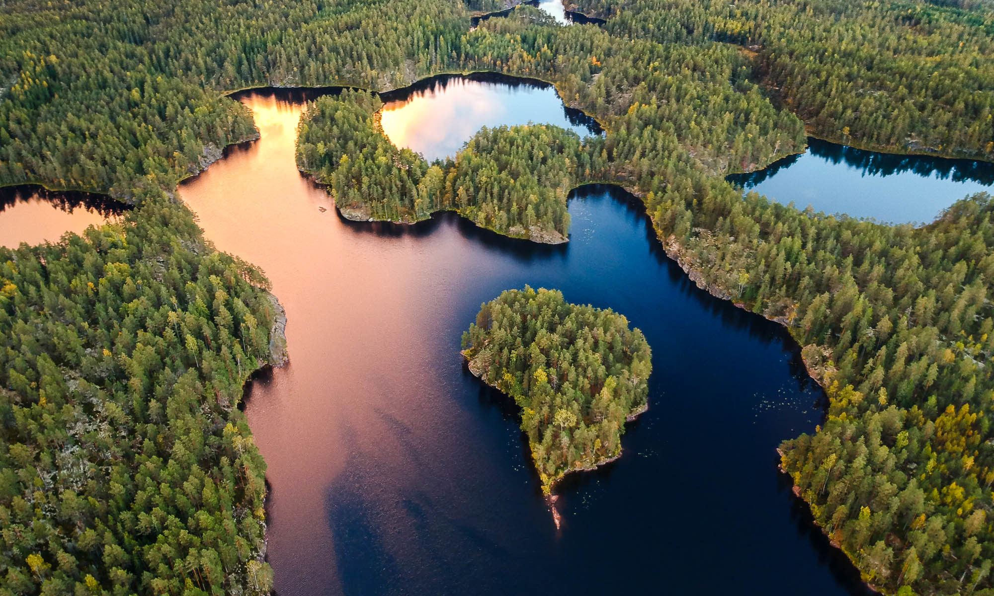 Nuuksio National Park in fall. Sunset over the typical Finnish forest and lakes. Nature near Helsinki, Finland.