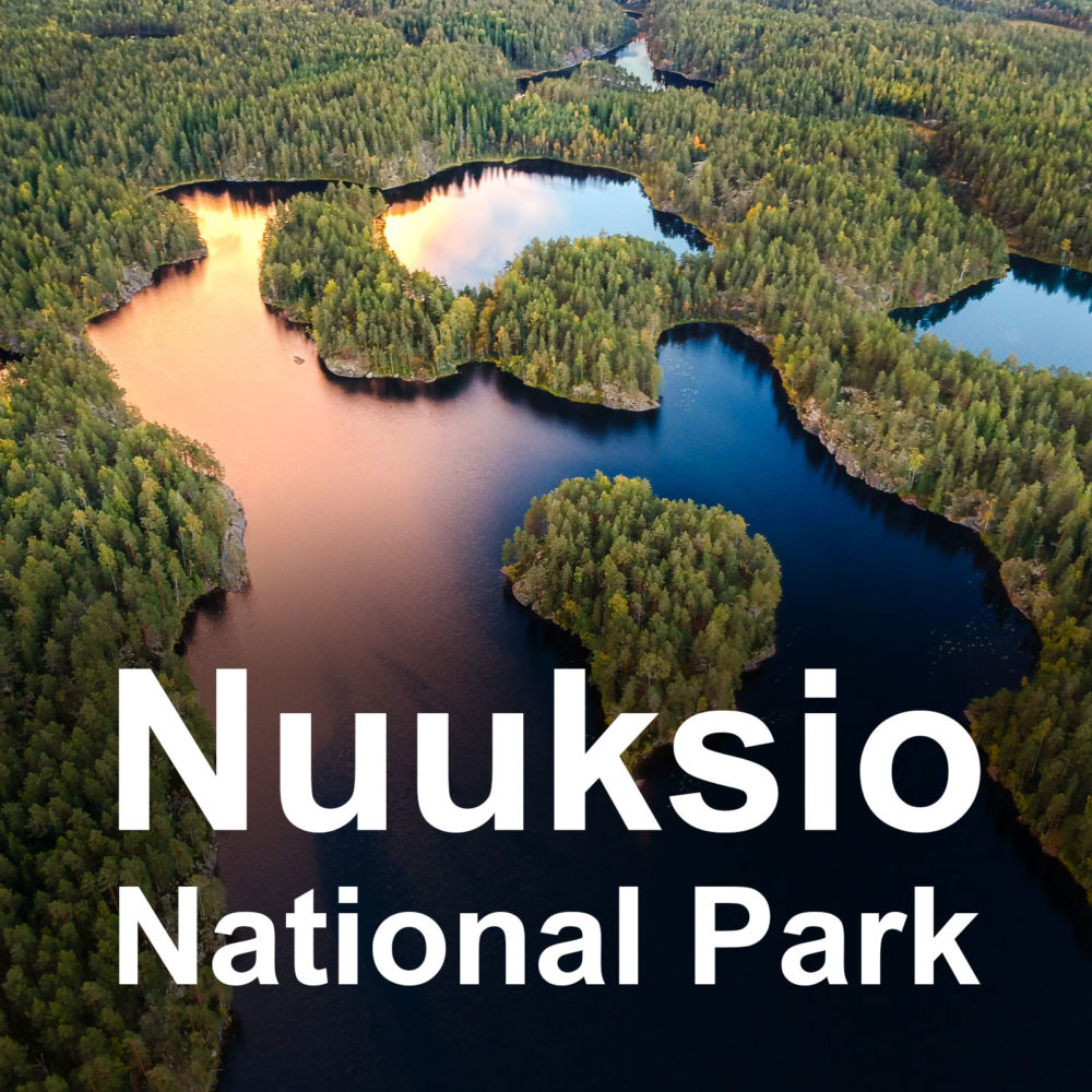 Guided hiking your in Nuuksio National Park, Helsinki, Finland.