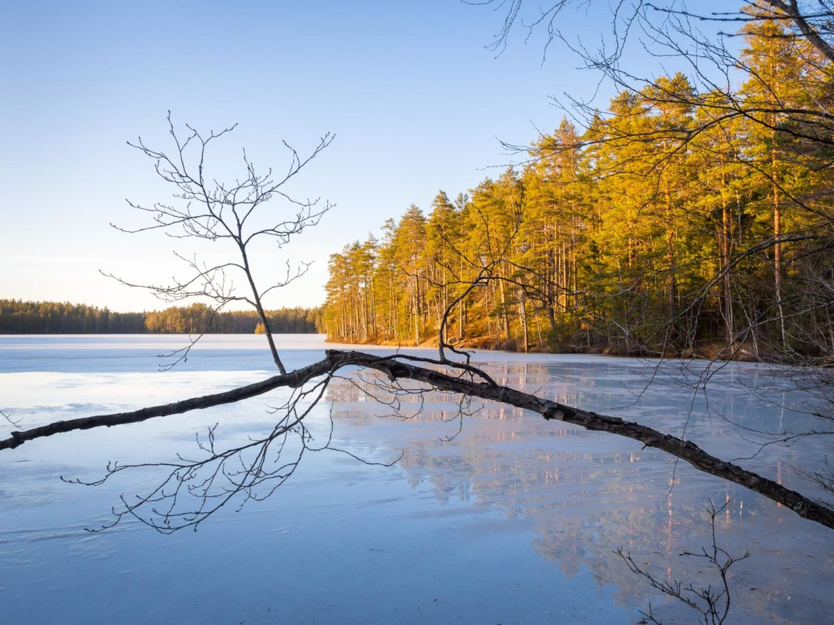 Nuuksio National Park in spring in April. End of winter and beginning of spring. Nature near Helsinki, Finland.