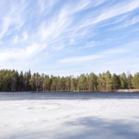 Nuuksio National Park in spring. Warm spring day, lake are still frozen in April. Nature near Helsinki, Finland.
