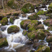 Nuuksio National Park in spring. Snow has melted and the streams are flowing in April. Nature near Helsinki, Finland.