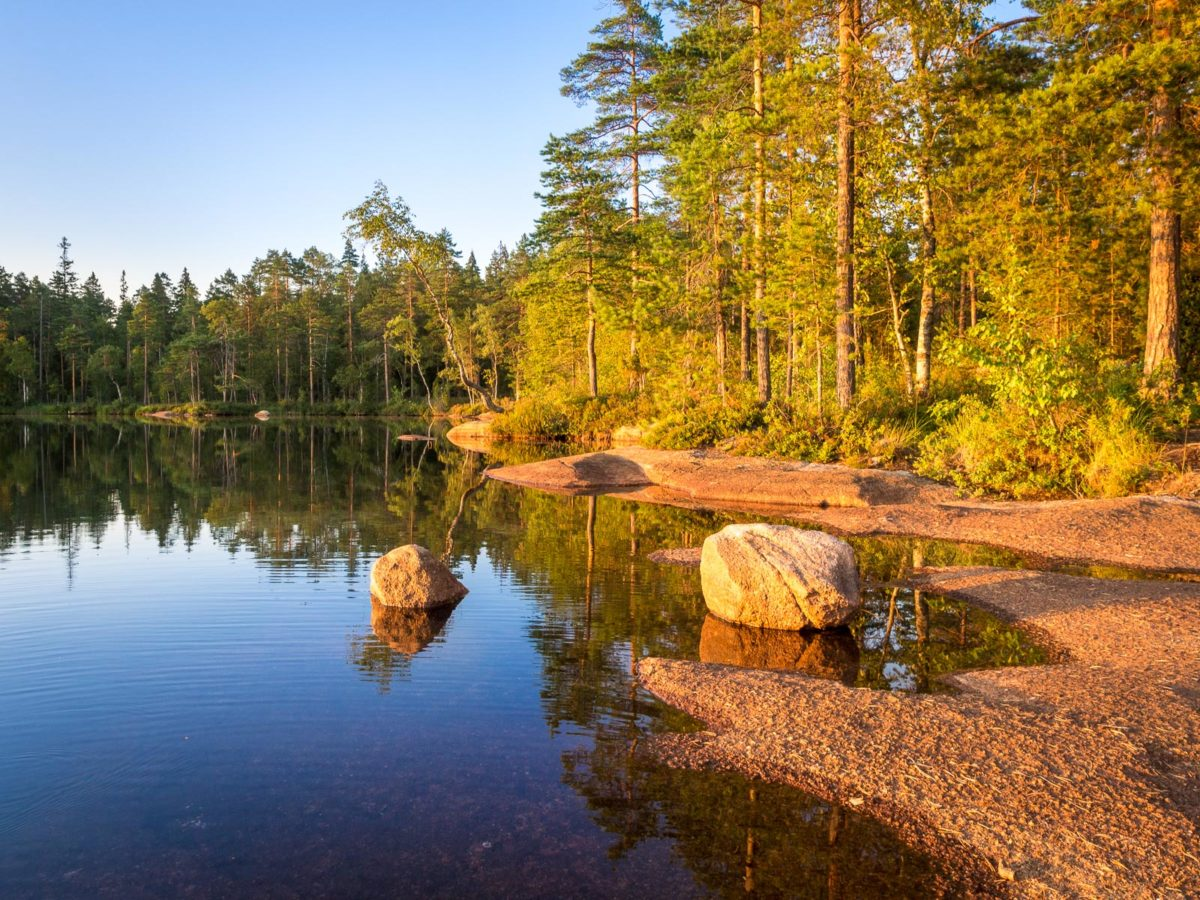 Nuuksio National Park in summer, in August. Calm lake in the forest, this is Finnish nature at it's best. Finnish nature near Helsinki, Finland.