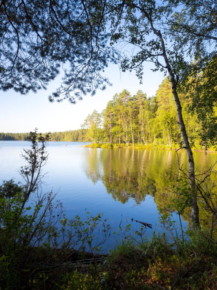 Nuuksio National Park in summer, in August. One of the best places in Nuuksio. Finnish nature near Helsinki, Finland.