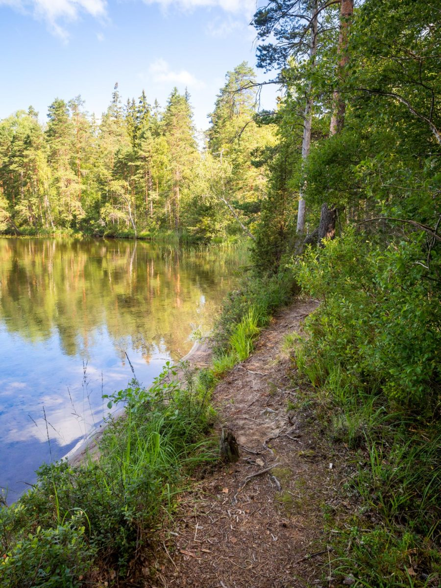 Nuuksio National Park in summer, in August. Trails are right next to the beautiful lakes. Finnish nature near Helsinki, Finland.