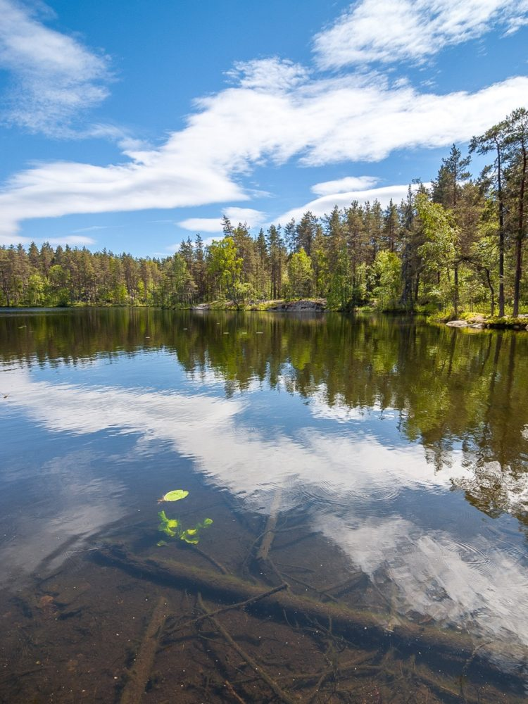 Nuuksio National Park in summer. A beautiful and really warm early summer's day in June. Nature near Helsinki, Finland.