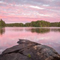 Nuuksio National Park in summer. Beautiful Finnish landscape at sunset. Nature near Helsinki, Finland.