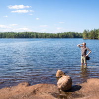 Nuuksio National Park in summer. Relax at the lakes and go for a swim in the clean and clear waters. Nature near Helsinki, Finland.