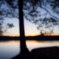 Nuuksio National Park in summer. Peace and quiet at a lake after sunset in August. Nature near Helsinki, Finland.