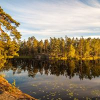 Nuuksio National Park in summer. Peaceful evening in July. Nature near Helsinki, Finland.