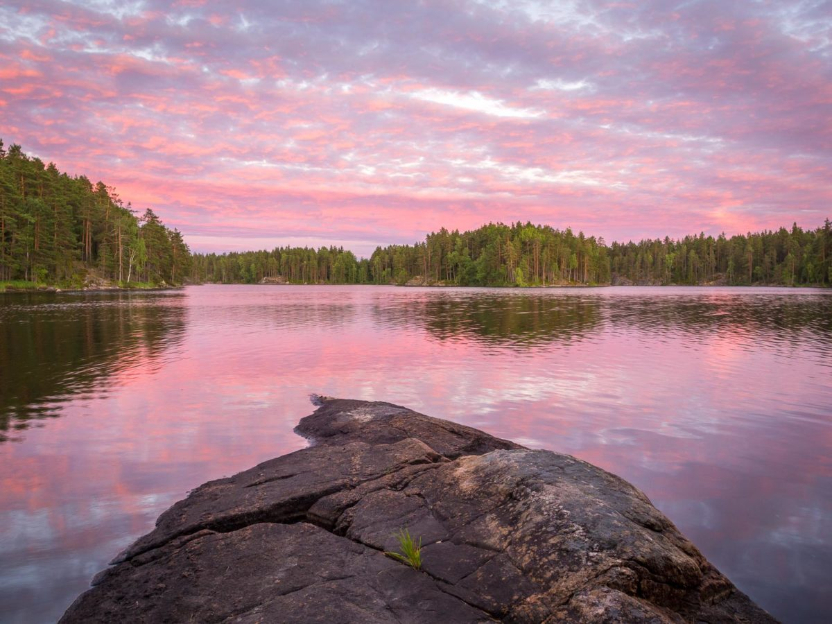 Nuuksio National Park in summer in July. Peaceful sunset with beautiful clouds. Nature near Helsinki, Finland.