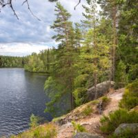 Nuuksio National Park in summer, in July. Best trails here, hiking right next to lakes. Finnish nature near Helsinki, Finland.