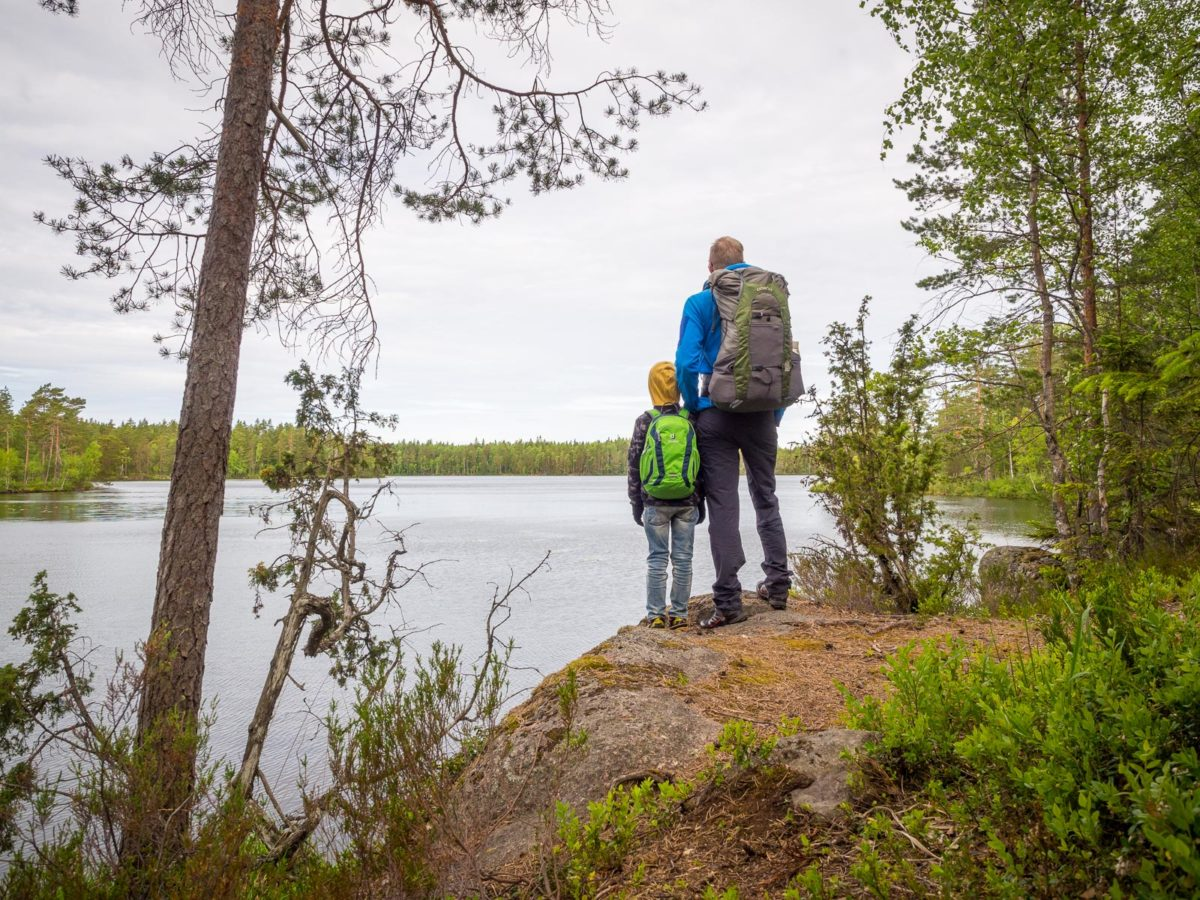 Nuuksio National Park in summer, in June. Relaxing by the lakes. Finland's nature near Helsinki, Finland.