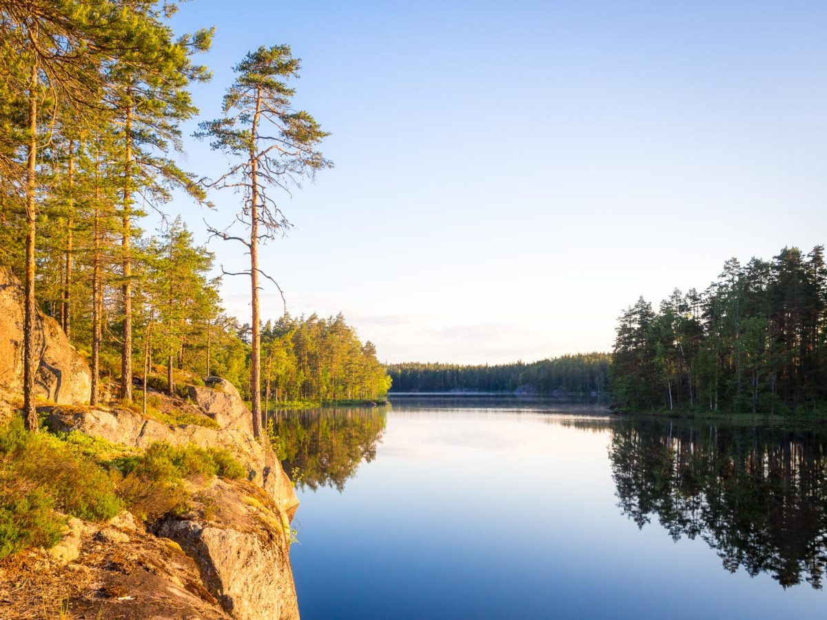 Nuuksio National Park in summer in June. Summer in Finland is clear lakes and forests. Nature near Helsinki, Finland.