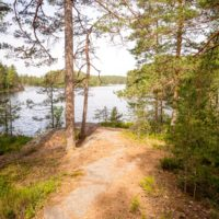 Nuuksio National Park in summer, in June. Trails and paths are in summer conditions. Finnish nature near Helsinki, Finland.
