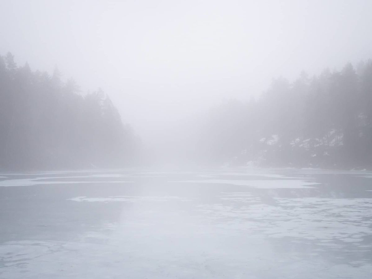 Nuuksio National Park at the end of winter and beginning of spring. Temperatures are rising and snow and ice are melting making the air foggy in April. Nature near Helsinki, Finland.