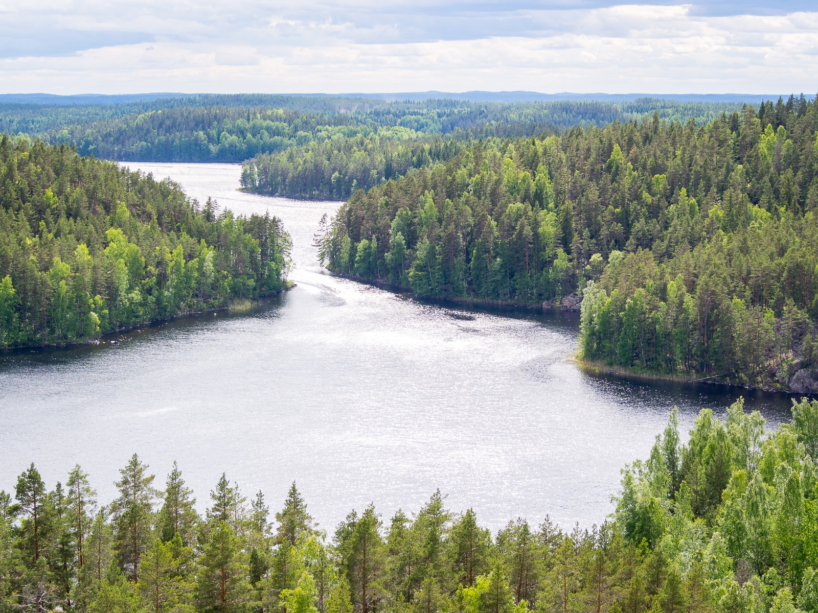 Repovesi National Park in summer. Stunning views of Southern Finland. Nature near Helsinki, Finland.